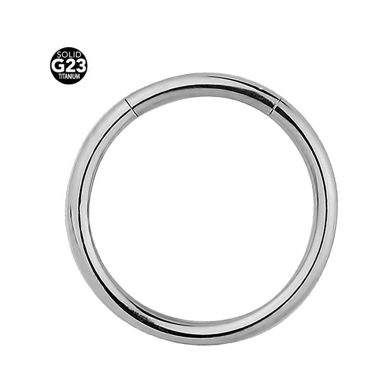16ga Titanium Silver Segment Rings Lip Ear Nose Eyebrow Cartilage Septum Hoop Tragus Daith 2