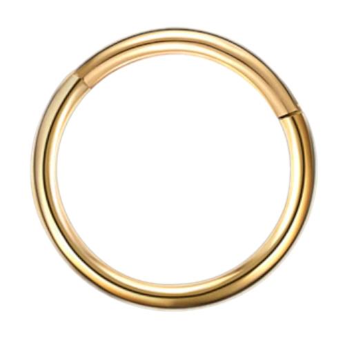 16g G23 Gold Titanium Hinged Segment Clicker Ring Nipple Ear Cartilage Eyebrow Lip Piercing