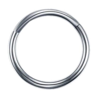 16g G23 Silver Titanium Hinged Segment Clicker Ring Nipple Ear Cartilage Eyebrow Lip Piercing