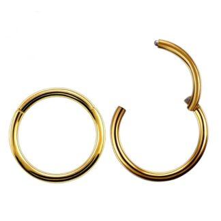 16g Gold Titanium Anodised Hinged Segment Clicker Ring Nipple Ear Cartilage Eyebrpw Lip Piercings